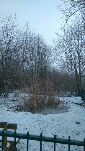 Winterruhe (1)